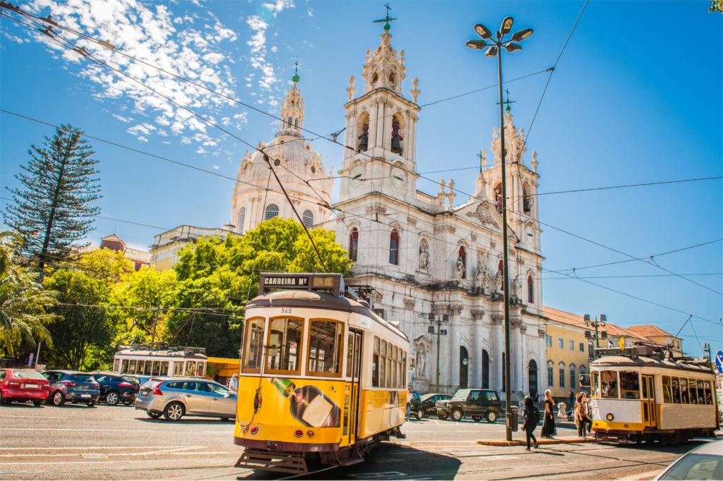 Confidences d'Ivana, l'une de nos fidèles traductrices portugaise